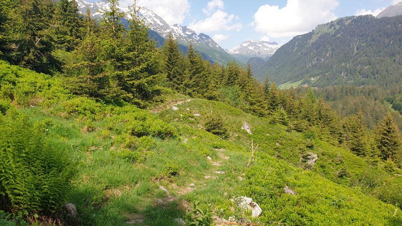 Trekking di montagna Alpe Gorda – 11 luglio 2021